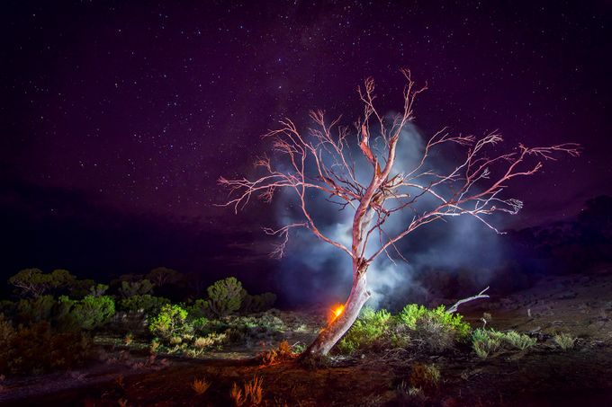 Burning Tree  by bracey - Night Wonders Photo Contest