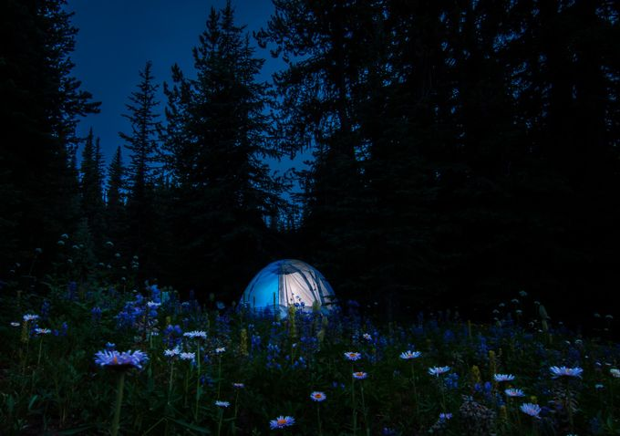alpine magic by jessrelkoff - Outdoor Camping Photo Contest