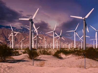 Palm Springs Wind Mills 3