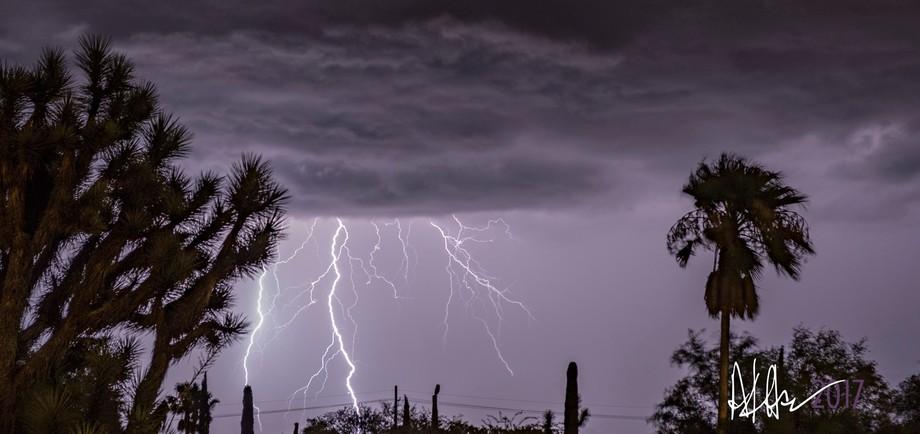 it's monsoon season in Arizona!