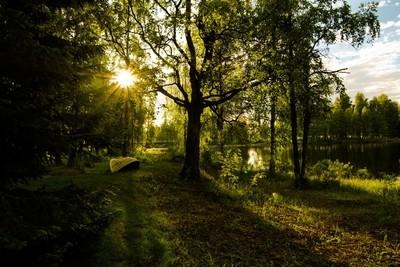 Mid summer in Finland