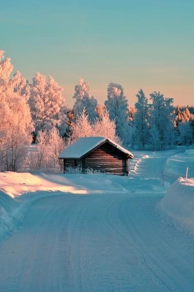 Winter days in Finland