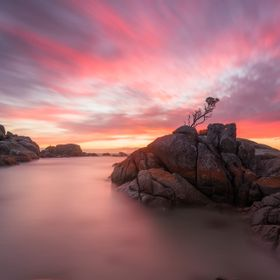 I was lucky enough to spend this morning at one of my favourite areas in Tasmania. The Bay of Fires never disappoints and the sunrise on that bea...
