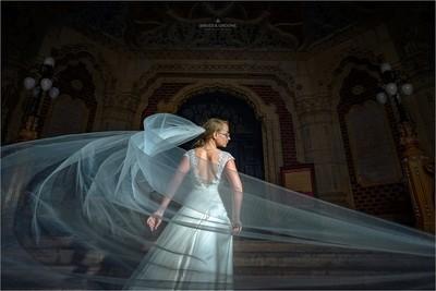 Beauty & Veil