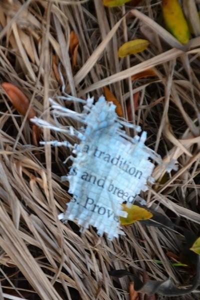 Message on Farm