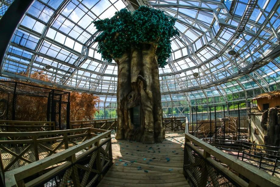 Zoo abandoned