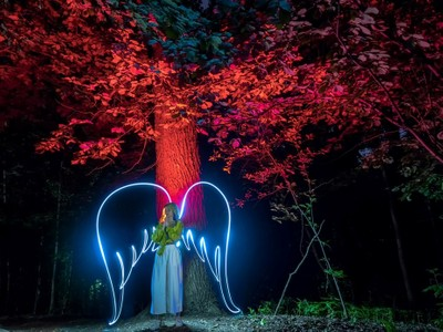 The angel of the night forests.