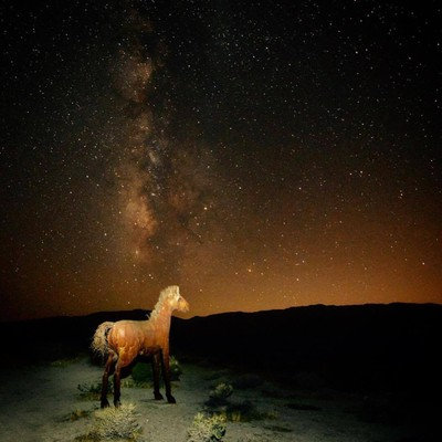 Mystical Horse Under the Milky Way