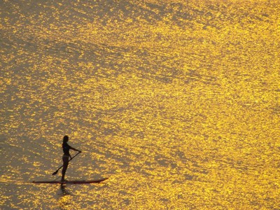 Golden Paddleboarder