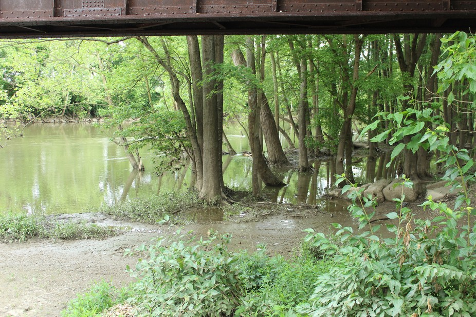 I was walking along the Monon Trail with my camera and like the view so I took the shot.  It had ...