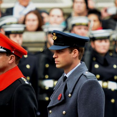 Prince William on parade at the Cenotaph, London 2014.
