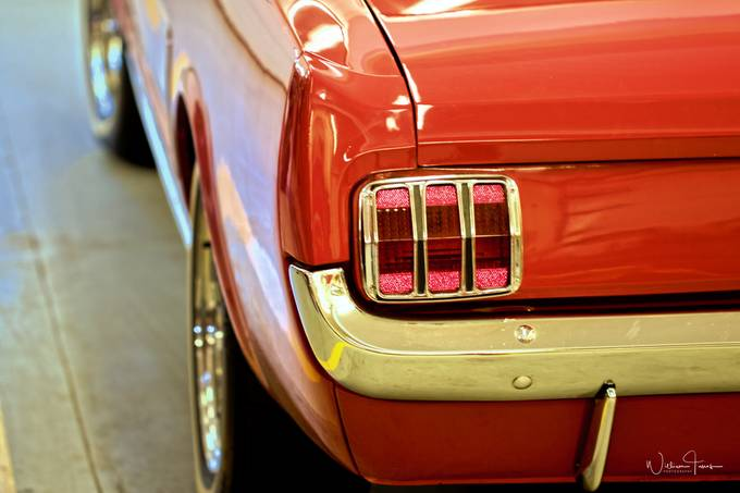 66 Mustang by williamtanos - My Favorite Car Photo Contest