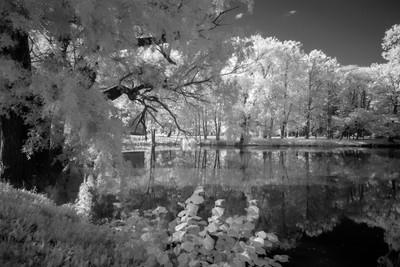 Park of Kehtna