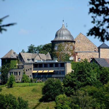The Sababurg castle & animal park.