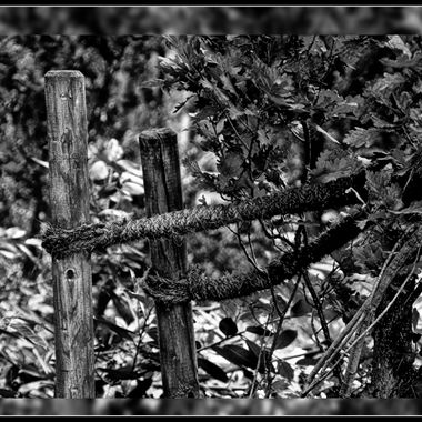Just a couple of poles a rope and some bush leaves.
