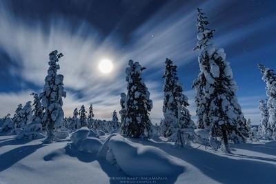 Winter wonderland at night
