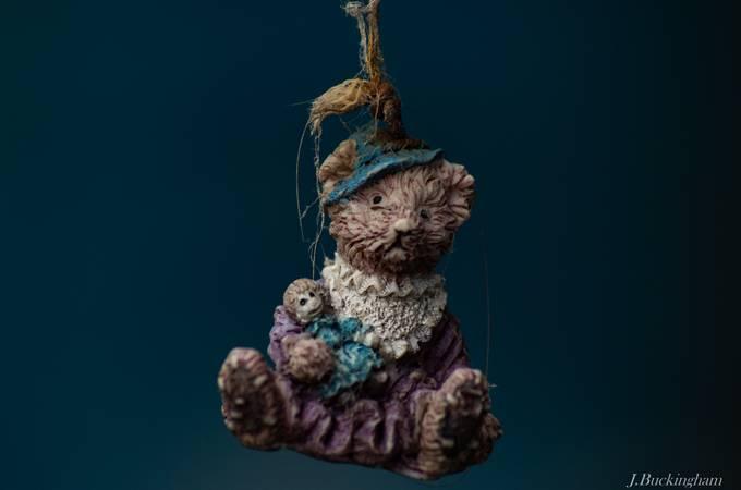 Teddy bear by JBuckingham - Social Exposure Photo Contest Vol 11