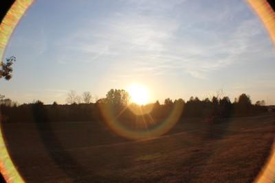 Sunnyset Circles