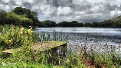 Jetty at Nigel Pond, Roanhead
