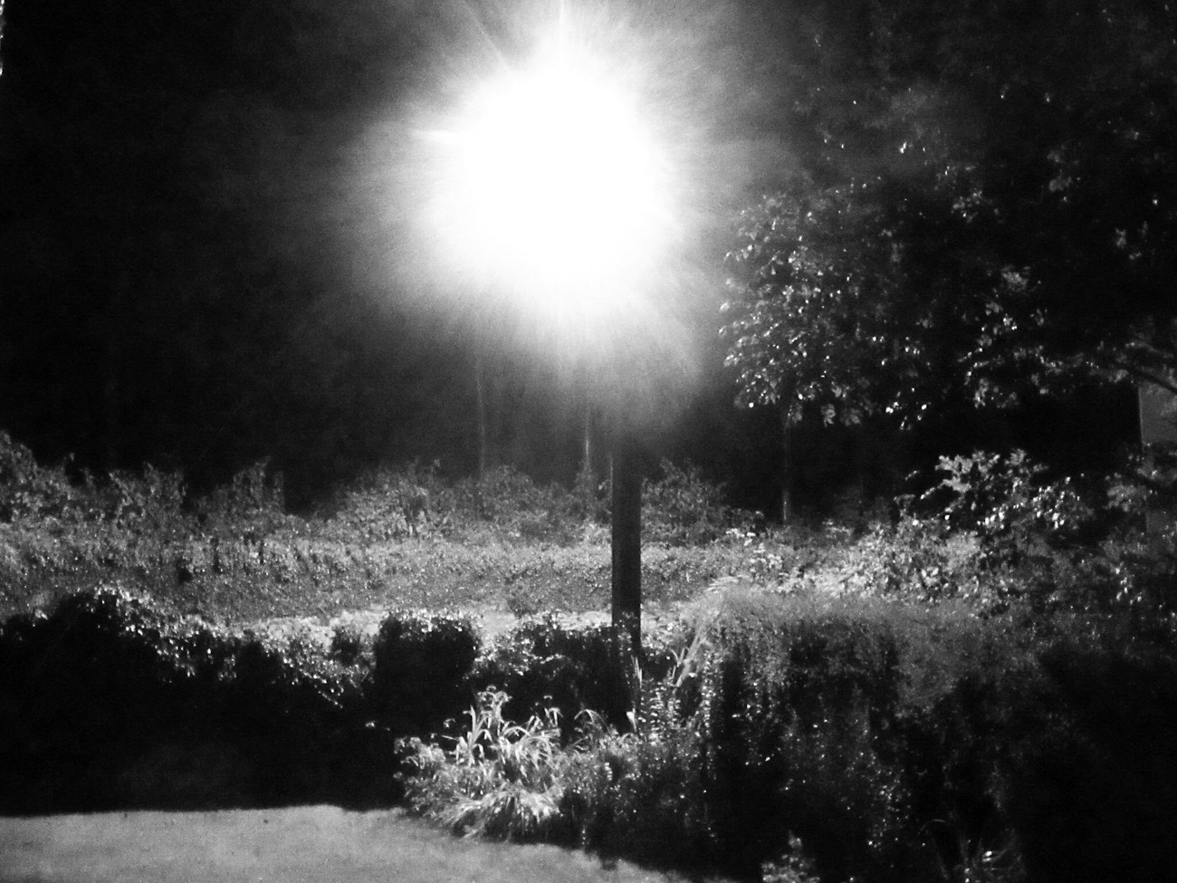 Streetlighting mono