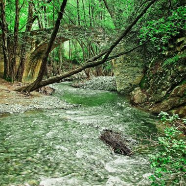 I took this photo when we went for a picnic, at the Trodos Mountains, Cyprus, in the year 2013. I took this photo next to a stream.