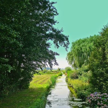 I took this photo when we went to the Netherlands in the year 2009.  On this day we decided to go on a bicycle trip around Amsterdam with friends. This was one of the photos that I took while cycling.