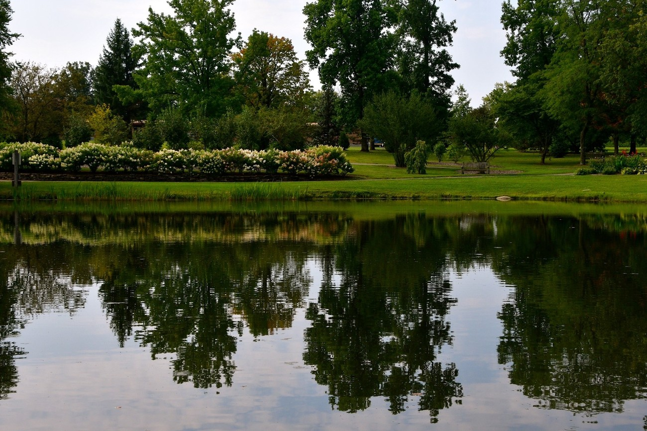 Local metroopark so gorgeous