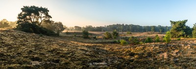 Panorama - Sunrise Bergerheide