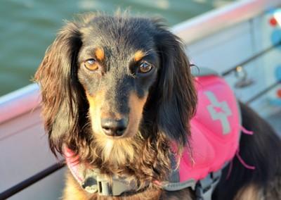 Amira in boat-Williams Lake