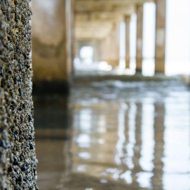 Under the Pier   Galveston
