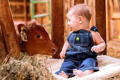 A Farmer's Friend