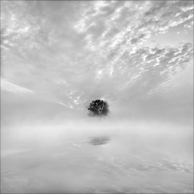 Dawn dreams in Mono