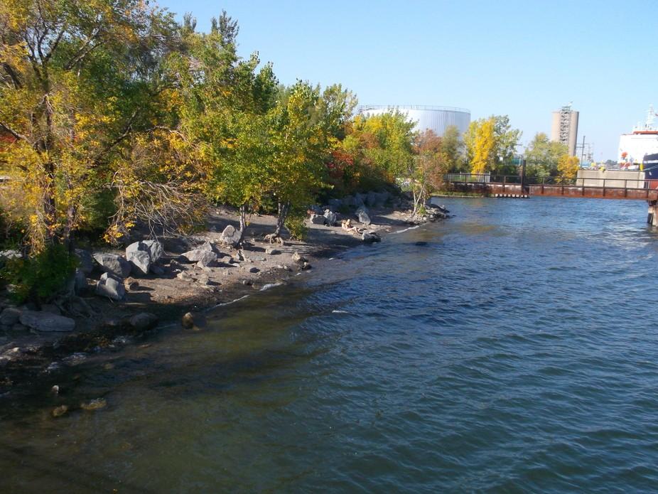 un beau parc dans tétreauville a Montréal.