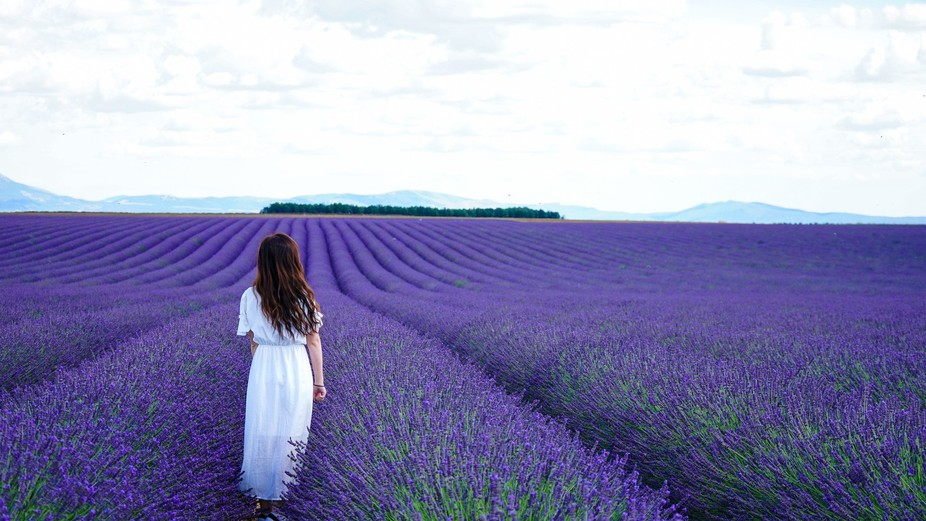 Provence, itis the most beautiful place in the world!
