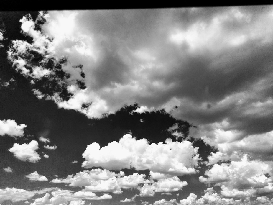 Cloudy day in the Sonoran Desert