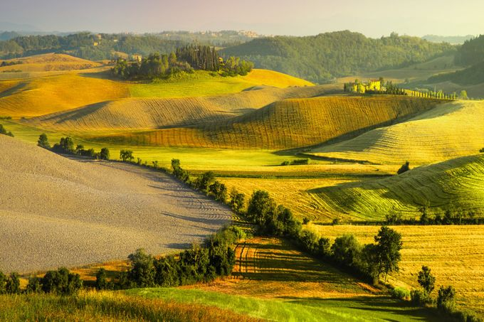 The Long Shadows of Morning  by Jamescalvert - Curves In Nature Photo Contest
