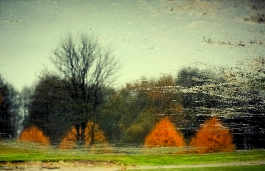 The miror of Autumn