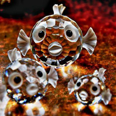 Crystal Fish set taken with Macro Lens,