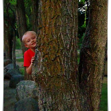 Boy By the Tree 2