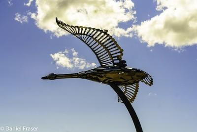 Trumpeter Swan Statue HD-4