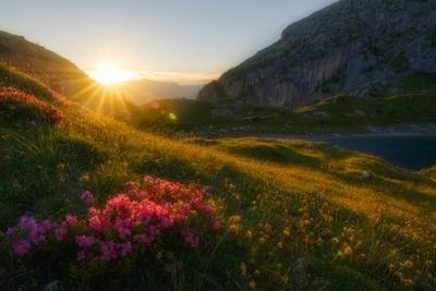 una bella passegiata al tramonto  in posti fantastici dove non puoi fare altro che  ascoltare il silenzio...  A nice walk at sunset In fantastic place by Theo-Herbots-Fotograaf