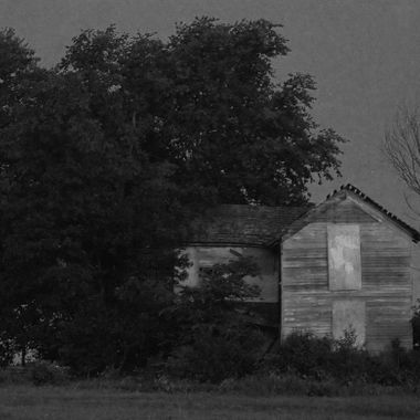 An abandoned house hidden in a clump of trees gives an creepy effect as if this was indeed a haunted house.