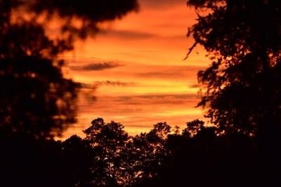 Blazing orange sunset