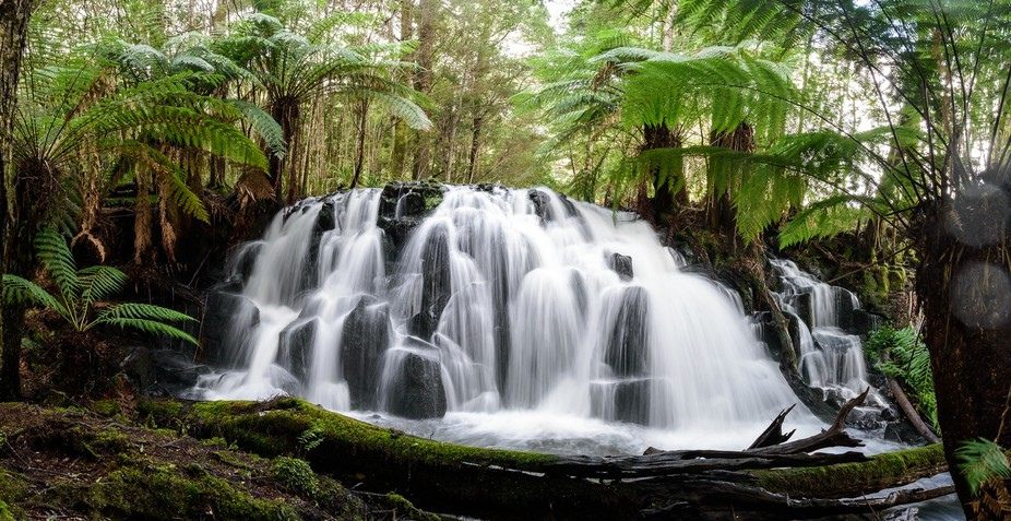 Upper Cam Falls in Tasmania's North West.  It's a short drive from home but fee...