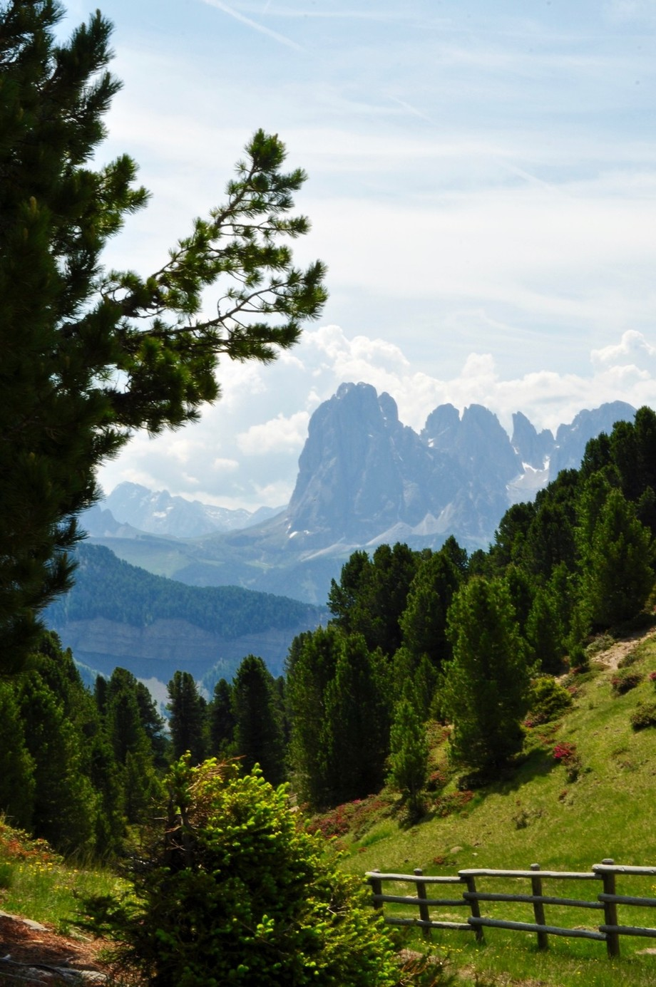 June in the Dolomites