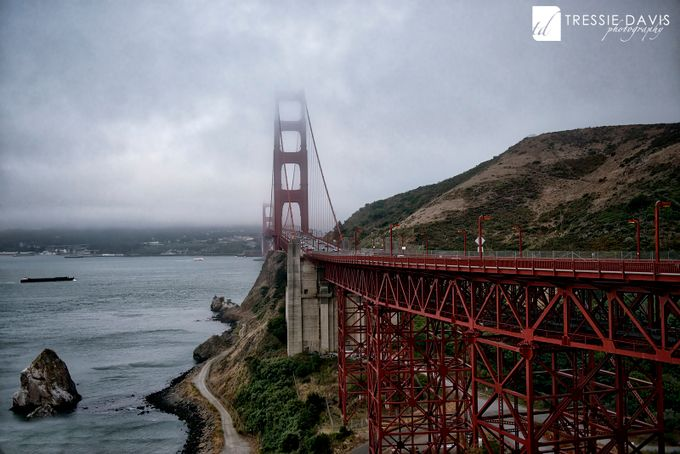 Golden Gate by tressiedavis - Fog And City Photo Contest
