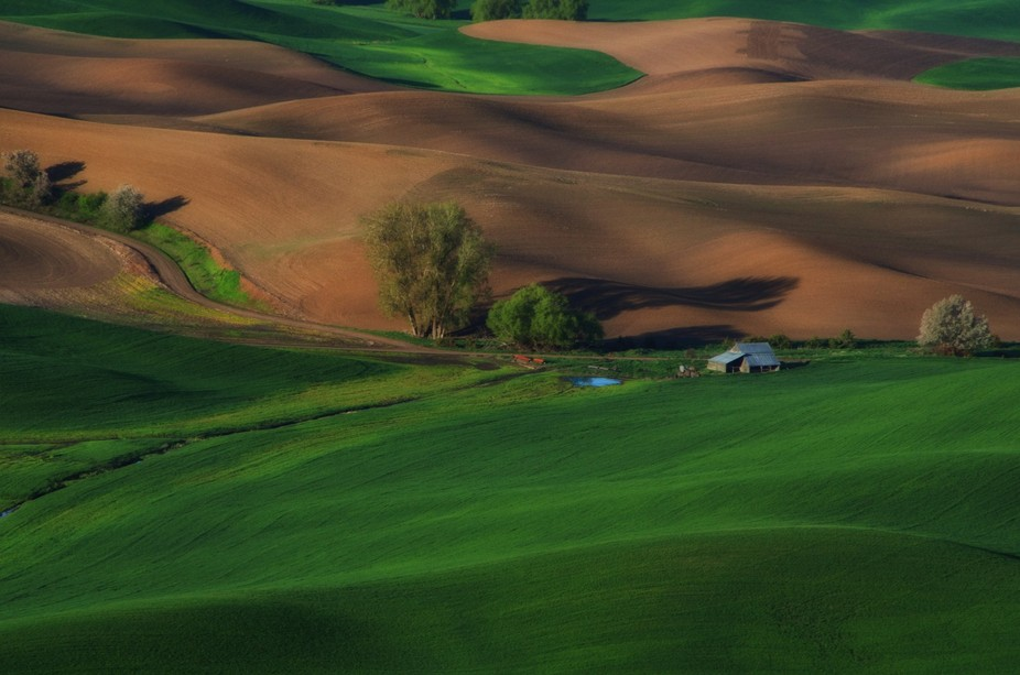 Steptoe Butte near Colfax, Washington