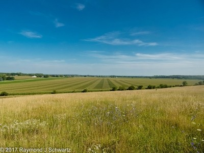 Rural Views in Champaign County Ohio
