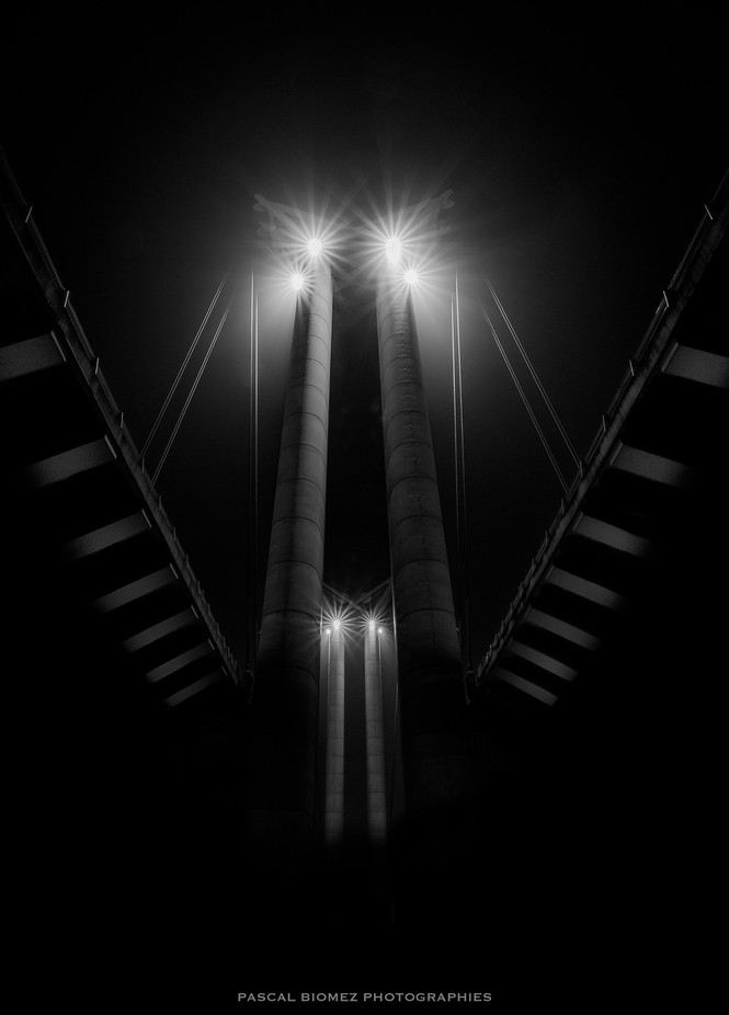 Flaubert bridge by pascalpbz - Monochrome Creative Compositions Photo Contest