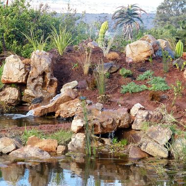 A water Feature I designed and established at Founders Game Lodge